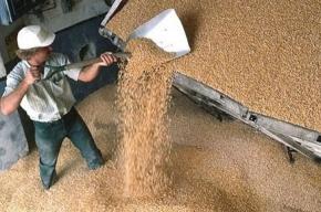 Мужчина погиб, упав в цистерну с зерном