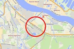 Двух школьниц жестоко изнасиловали недалеко от Колпино. Одна девочка — в коме