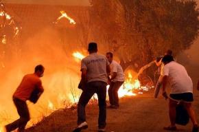 Лесные пожары в Греции приняли масштаб катастрофы