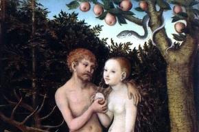 Первое яблоко на Земле Ева сорвала в Казахстане, выяснили ученые