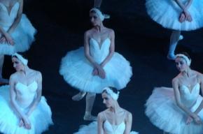 Михайловский театр откроет сезон «Лебединым озером»