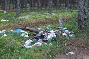 Справка: куда жаловаться на мусор?
