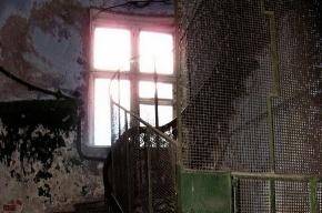 Дом на Днепропетровской: бомжи, дикие собаки, рожающие кошки и кавказский галдеж