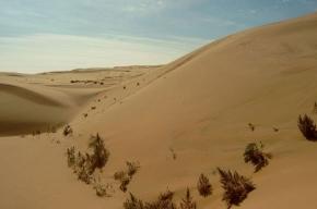 В пустыне Гоби нашли пропавшие буддийские сокровища