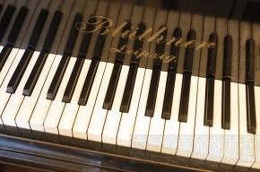 В Репино открывается музыкально-поэтический фестиваль
