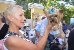 На собачьем конкурсе красоты победила Лили: Фоторепортаж