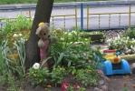 Фоторепортаж: «На Морской набережной есть «игрушечный» двор»