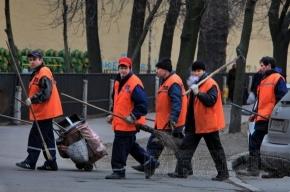 В Петербурге стартовал месячник по благоустройству