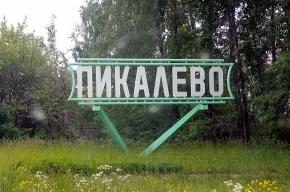 Суд между «БазээлЦемент-Пикалево» и «Петербургрегионгазом» закончился миром