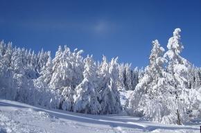 Предстоящая зима будет холоднее прошлой