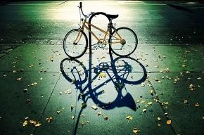 В Выборгском районе поймали велосипедных воров