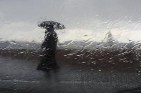 Завтра в Петербурге погода испортится