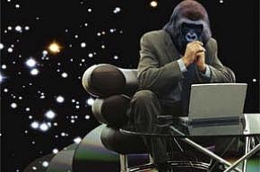 Прокуратура - против «Апгрейда обезьяны»