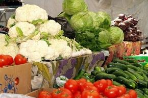 Праздник урожая пройдет у Сытного рынка