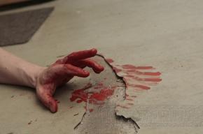 В Ленобласти мужчина зарезал грабителя