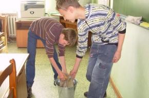 Школьная уборка: за и против