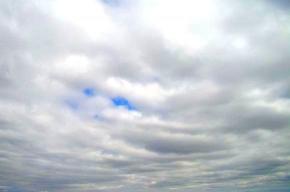 Петербургская погода 8 сентября