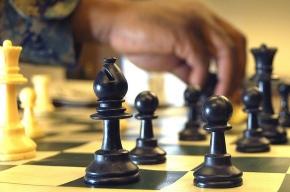 Шахматный клуб вернулся домой