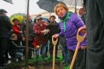 Губернатор взялась за лопату: Фоторепортаж