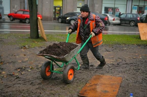 Губернатор взялась за лопату: Фото