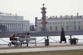 Российским семьям предложат рожать по контракту