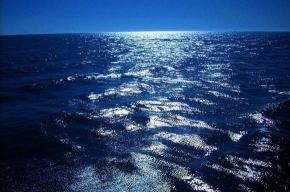 Михаил Войтенко: Arctic Sky попал в беду