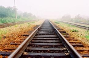 Под Тамбовом тепловоз врезался в пассажирский поезд