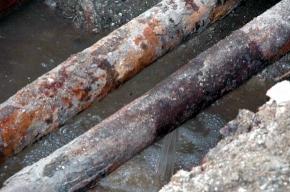 На Ленсовета ликвидируют прорыв трубы с кипятком