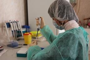 Школу во Фрунзенском районе не закроют на карантин из-за свиного гриппа