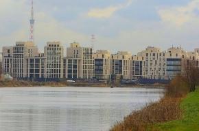 Российский аукционный дом провел первые торги