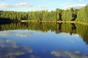 Депутаты ЗакСа обратятся к губернатору с просьбой защитить Красное озеро