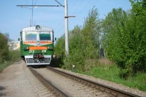 Из Петербурга в Гдов будет ходить уникальный дизель-электропоезд