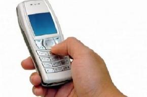 В Ленобласти 217 избирателей проголосовало по SMS