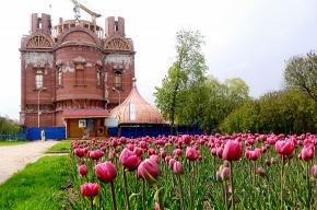 Проданный золотой слиток поможет восстановить храм Святой великомученицы Екатерины в Пушкине