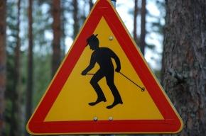 В Петербурге впервые пройдет День скандинавской ходьбы