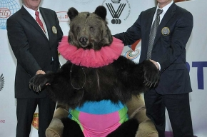 Чемпионат мира по прыжкам на батуте в Петербурге опять открыл… медведь