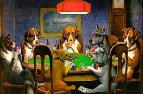 Аркадий Арканов оправдает покер