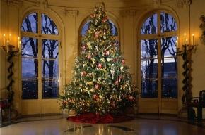 В Петербурге открывается выставка «Новогодняя елка. Двадцатый век»