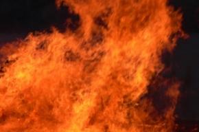 На улице Королева дотла сгорела однокомнатная квартира