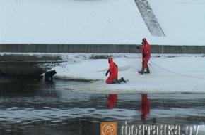 Спасатели вытащили собаку из замерзшей Смоленки