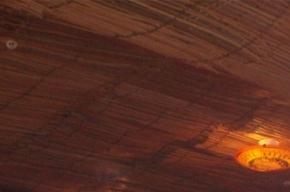 Посетители «Хромой Лошади» умерли из-за пенопласта