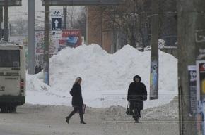 Заснеженный Петербург: фотографии читателей