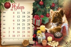 Новогодние каникулы будут десятидневными