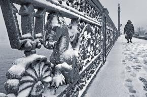 Петербург заносит снегом