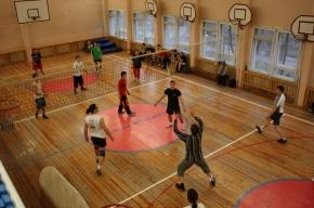 Волейболисты и волейболистки разыграют Рождественский Кубок