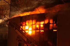 В Рязани сгорел развлекательный центр, который собирались закрыть пожарные