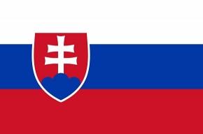 Словаки объявили состав олимпийской хоккейной сборной
