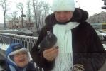 На Черной речке замерзают утки: Фоторепортаж