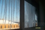 А из моего окна… бесхозяйственность видна: Фоторепортаж