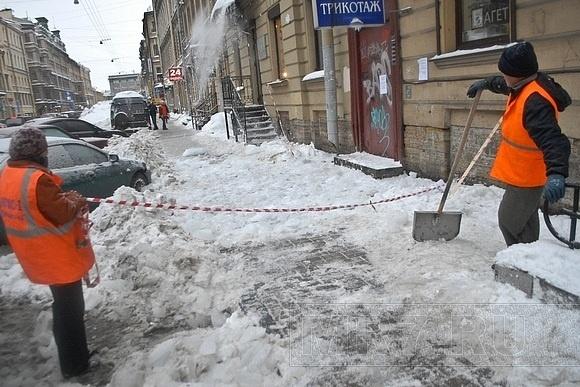 Петербургским дворникам еле хватает сил: Фото